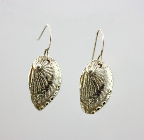 picasopaua shell (Small)
